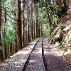 【自行車旅遊】【嘉義生態單車+特富野古道健走】原住民文化2日