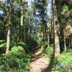 新竹北埔仙洞步道、五指山橫向步道、猴洞一線天步道,高 CP 散步路線