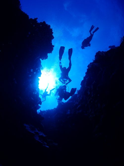 東北角潛水