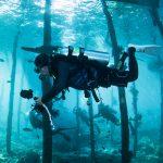 東北角X龍洞潛水X水下繽紛世界體驗