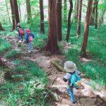 讓小孩去爬山有什麼好處呢、小孩的登山裝備